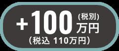 +税別100万円(税込110万円)